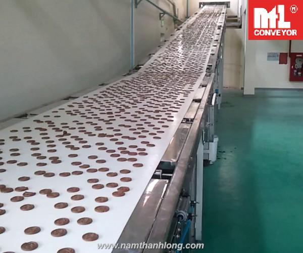 băng tải thực phẩm TPHCM
